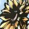 夏狐向日葵