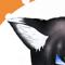 ★狐代魔王コンゴルモア