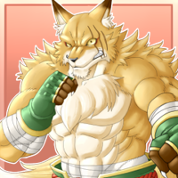 ★拳狐コンタ-200